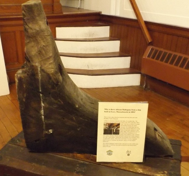 This is a mahogany knee taken from the ship during the rehabilitation.