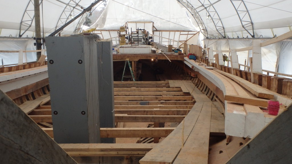 The gray vertical timbers on the center-left are the rudder and stern post. Running along the inside of the frames from the transom forward is the sheer shelf installed above the sheer clamp on the port and starboard sides.