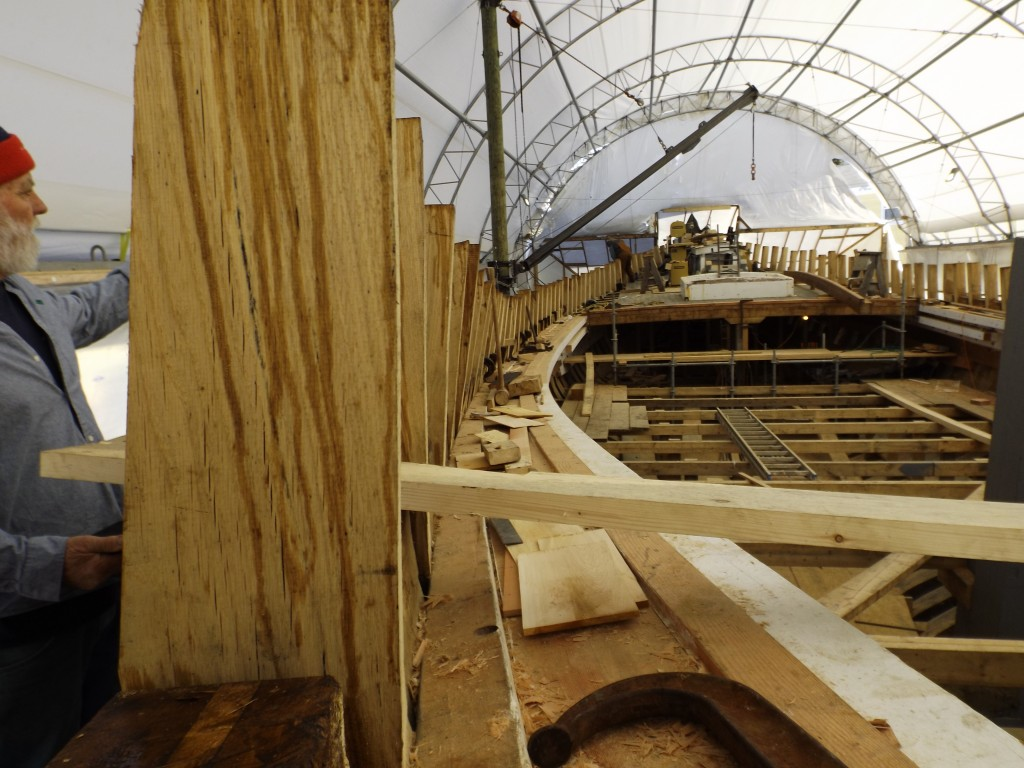 Dave gives the scale of the timbers of the frames, bulwarks and  the substantial sheer shelf which provides stability to the hull and will support the aft deck beams.