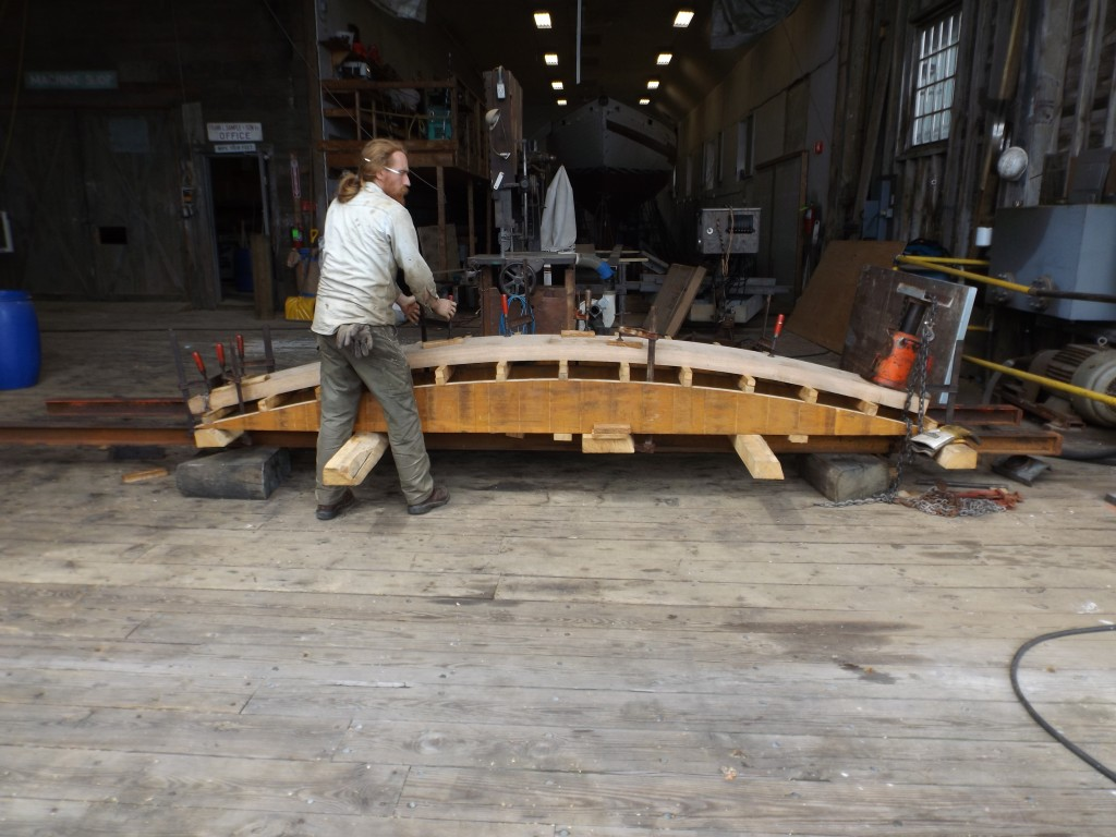 Finally, the clamps get a final tightening and teh plank is fit to the form where it will stay overnight until the crew is ready to fasten it to the transom.