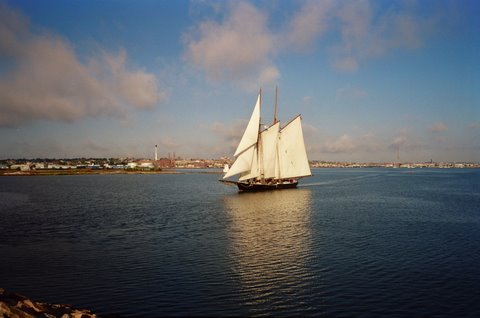 Soon Ernestina-Morrissey will be sailing in New Bedford Harbor again! photo credit R. Morin