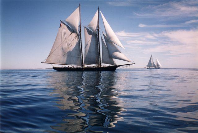 off Isles of Shoals - photo credit: Susan Bank